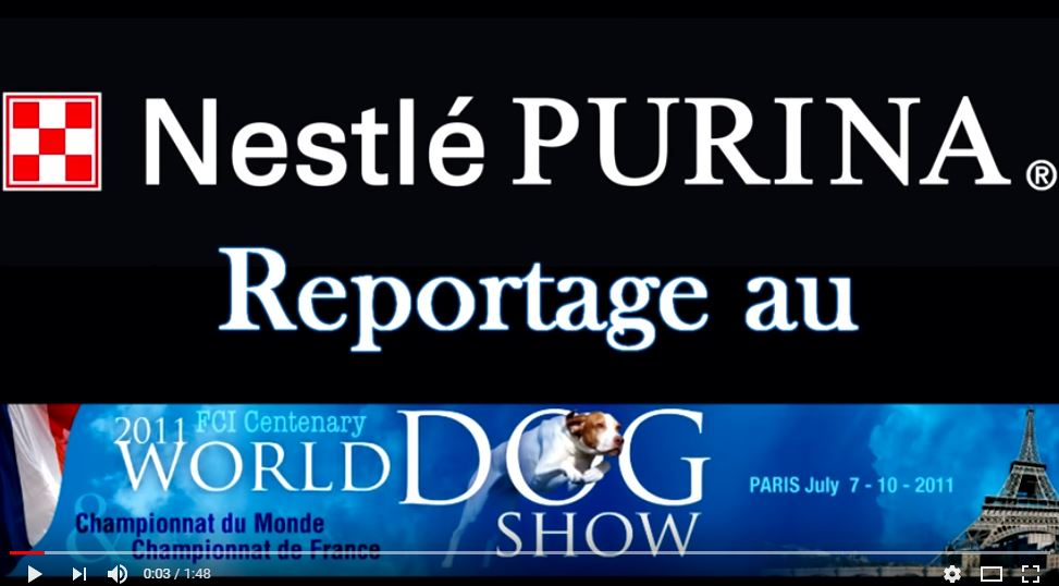 reportage purina world dog show 2011